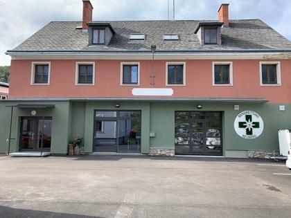 Wohnungen in 8692 Neuberg an der Mürz