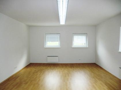 Büros /Praxen in 3160 Traisen