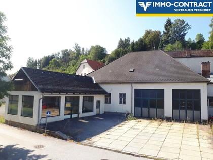 Hallen / Lager / Produktion in 3910 Zwettl-Niederösterreich