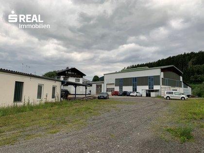 Hallen / Lager / Produktion in 8793 Trofaiach