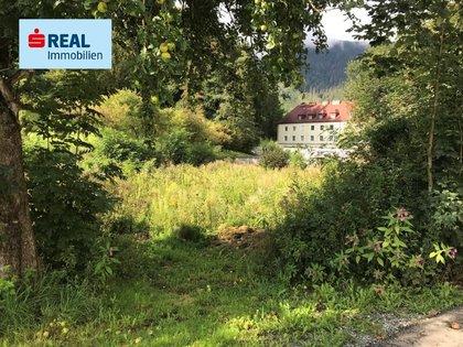 Grundstücke in 8784 Trieben