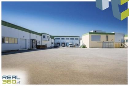 Büros /Praxen in 3361 Aschbach-Markt
