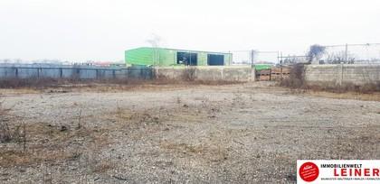 Hallen / Lager / Produktion in 2320 Rannersdorf