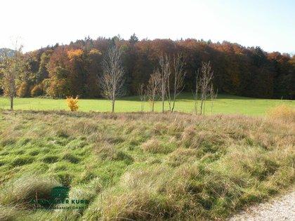Grundstücke in 5084 Großgmain