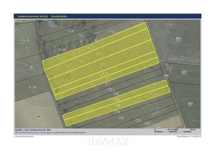 Land- / Forstwirtschaft in 2141 Ameis