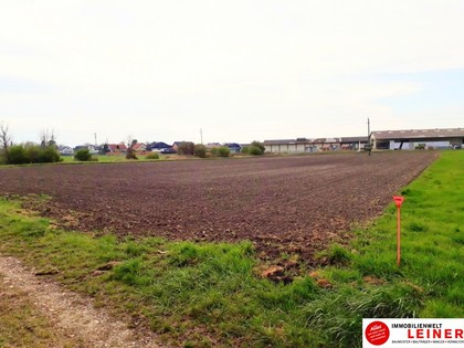Grundstücke in 2431 Enzersdorf an der Fischa