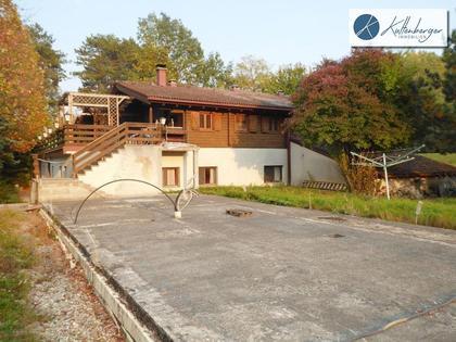 Hallen / Lager / Produktion in 2434 Götzendorf an der Leitha
