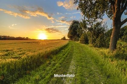 Land- / Forstwirtschaft in 5202 Neumarkt am Wallersee
