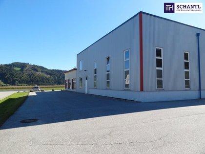 Hallen / Lager / Produktion in 9112 Griffnergemeinde