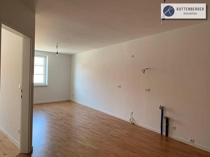 Wohnungen in 2020 Hollabrunn