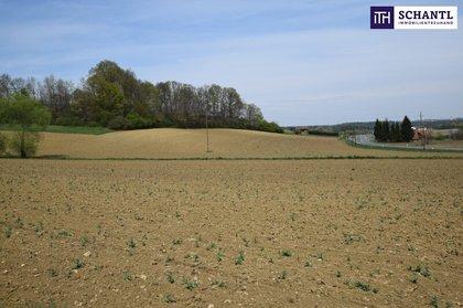 Grundstücke in 8521 Wettmannstätten
