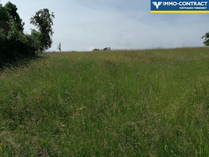 Land- / Forstwirtschaft in 4770 Andorf