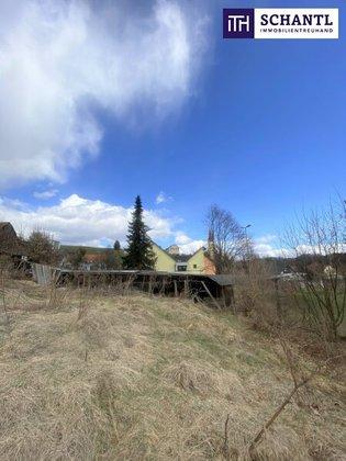 Grundstücke in 8081 Sankt Ulrich am Waasen