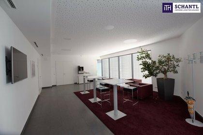 Büros /Praxen in 8700 Leoben