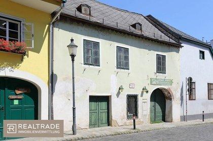 Häuser in 1190 Wien
