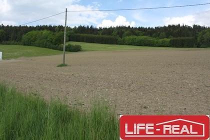 Grundstücke in 4170 Sankt Oswald bei Haslach