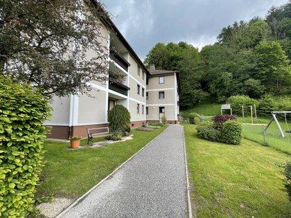 Wohnungen in 2842 Edlitz