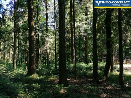 Land- / Forstwirtschaft in 4761 Enzenkirchen