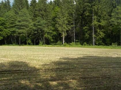 Grundstücke in 9423 Sankt Georgen im Lavanttal