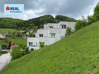 Wohnungen in 3264 Reinsberg