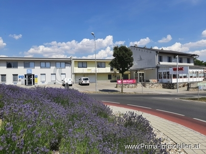 Büros /Praxen in 7100 Neusiedl am See