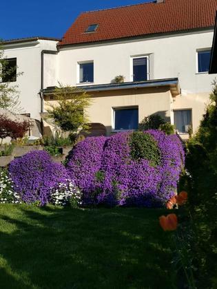Häuser in 4600 Thalheim bei Wels