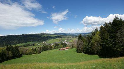 Grundstücke in 6861 Alberschwende