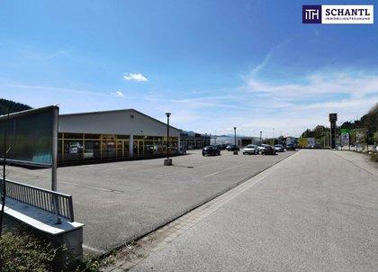 Büros /Praxen in 8650 Kindberg