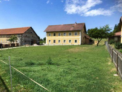Land- / Forstwirtschaft in 2871 Zöbern