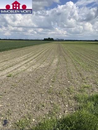 Land- / Forstwirtschaft in 3430 Tulln an der Donau