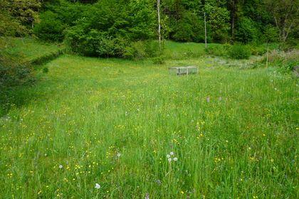 Grundstücke in 4452 Ternberg