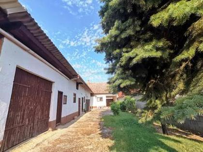 Häuser in 7151 Wallern im Burgenland
