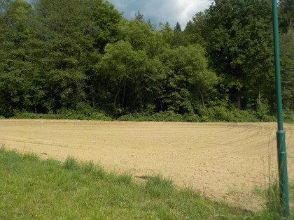 Land- / Forstwirtschaft in 9423 Sankt Georgen im Lavanttal