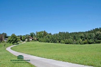 Land- / Forstwirtschaft in 5201 Seekirchen am Wallersee