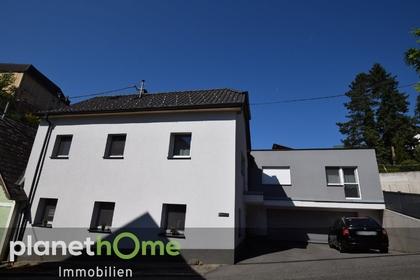 Häuser in 4221 Steyregg