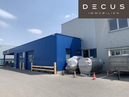Hallen / Lager / Produktion in 2362 Biedermannsdorf