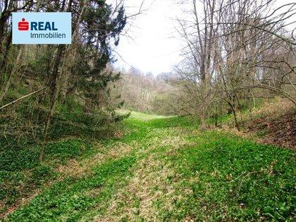 Land- / Forstwirtschaft in 3233 Kilb