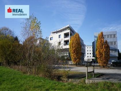 Büros /Praxen in 5101 Bergheim