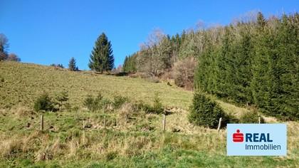 Grundstücke in 9571 Sirnitz