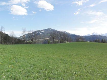 Land- / Forstwirtschaft in 5453 Werfenweng