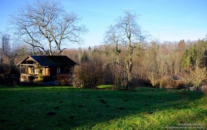 Grundstücke in 4400 Sankt Ulrich bei Steyr