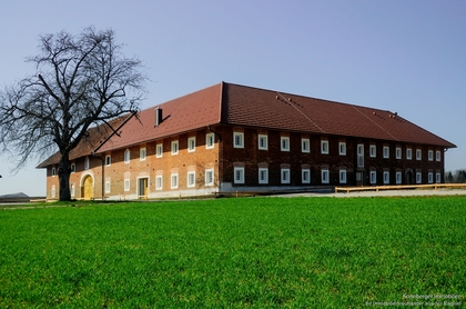 Wohnungen in 4483 Hargelsberg